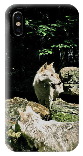 The Wild Wolve Group A Phone Case by Debra     Vatalaro