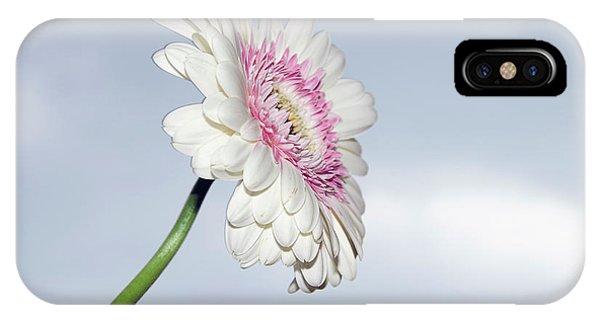 Beautiful Gerber IPhone Case