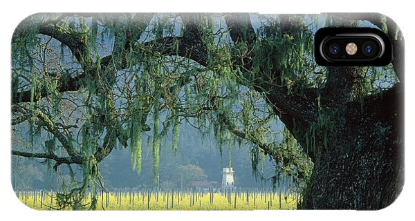 2b6319 Mustard In The Oaks Sonoma Ca IPhone Case
