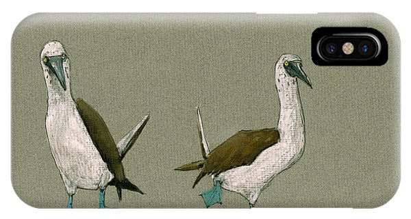 Boobies iPhone Case - Blue Footed Boobies by Juan  Bosco