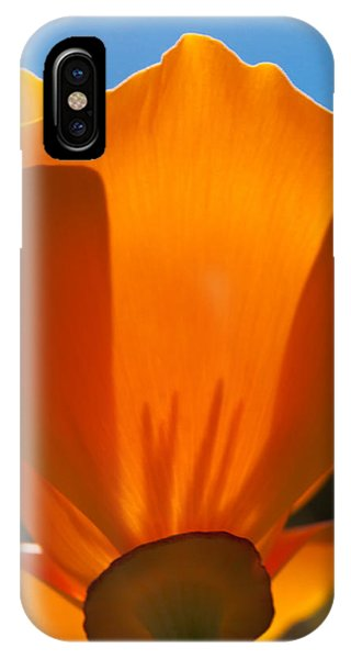 Californian Poppies IPhone Case