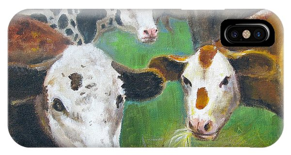 3 Cows IPhone Case