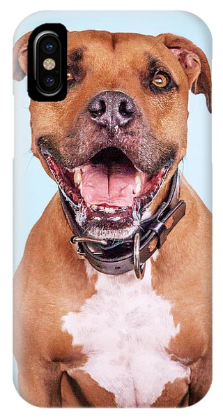 Pitbull iPhone Case - Dexter by Pit Bull Headshots by Headshots Melrose