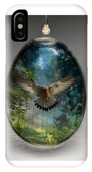 Eagle Art IPhone Case