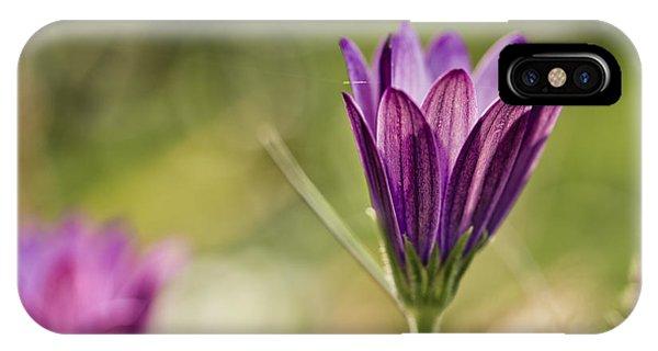 Violet iPhone Case - Flower On Summer Meadow by Nailia Schwarz