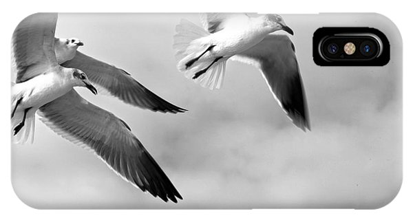 3 Gulls IPhone Case