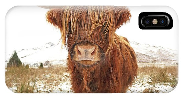 Cow iPhone X / XS Case - Highland Cow by Grant Glendinning