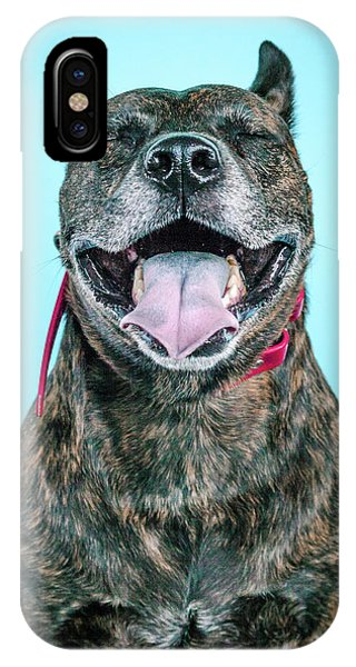 Pitbull iPhone Case - Hijiki by Pit Bull Headshots by Headshots Melrose