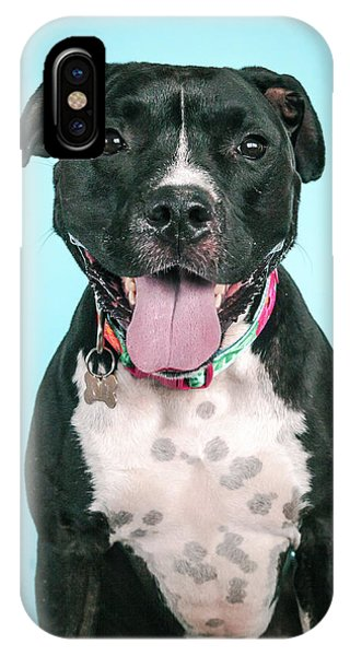 Pitbull iPhone Case - Hope by Pit Bull Headshots by Headshots Melrose