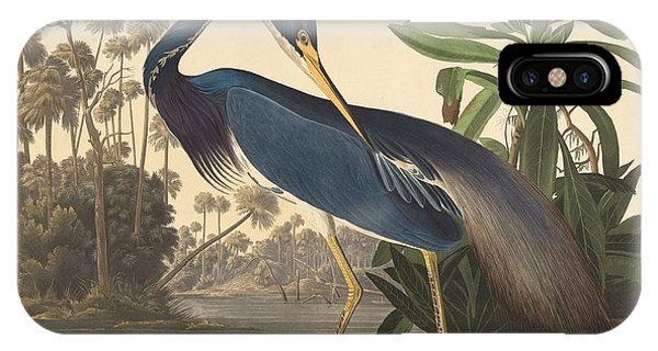 Ibis iPhone Case - Louisiana Heron by Dreyer Wildlife Print Collections