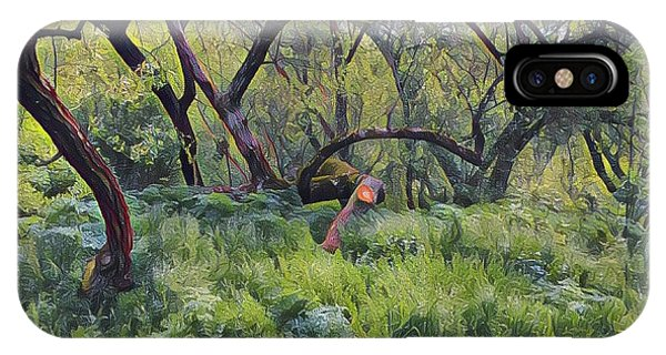 Morning Walk Trees IPhone Case