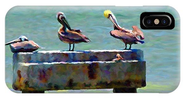 3 Pelicans IPhone Case
