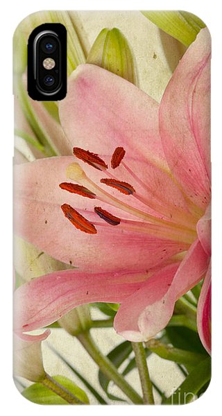Lilly iPhone Case - Pink Lilies by Nailia Schwarz