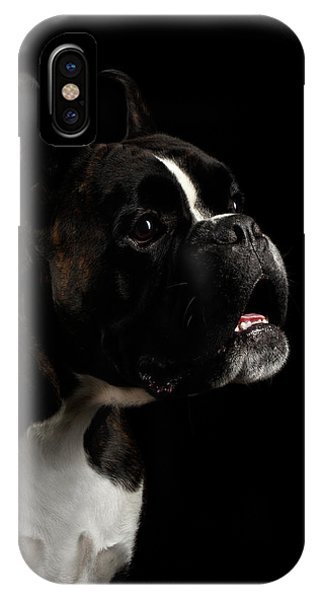 Dog iPhone X Case - Purebred Boxer Dog Isolated On Black Background by Sergey Taran