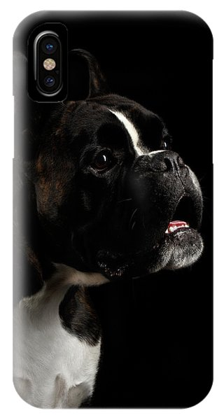 Dog iPhone X / XS Case - Purebred Boxer Dog Isolated On Black Background by Sergey Taran