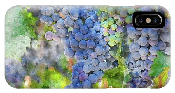 Red Wine Grapes On The Vine IPhone Case