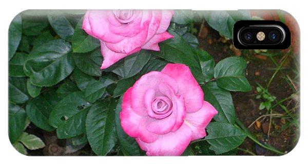 Paradise Rose IPhone Case