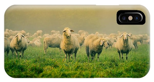 Camel iPhone Case - Sheep by Alice Kent
