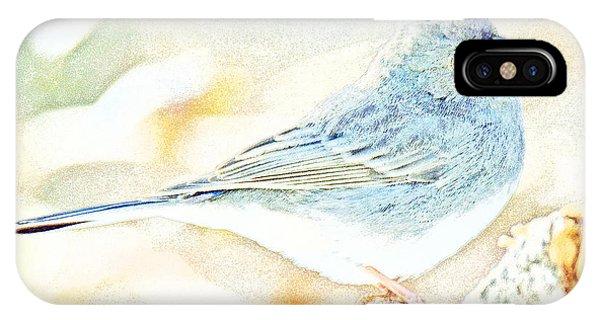 Slate-colored Junco, Snowbird, Male, Animal Portrait IPhone Case