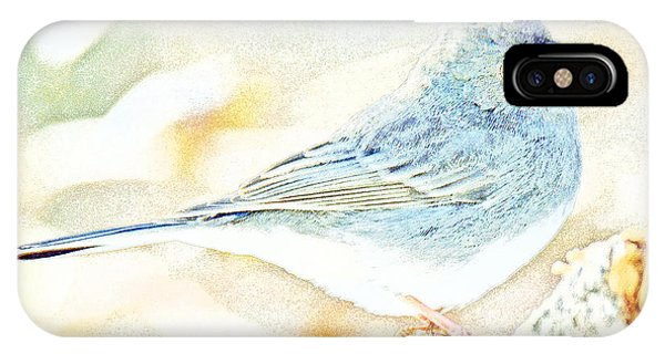 Slate-colored Junco, Snowbird, Male, Animal Portrait IPhone Case