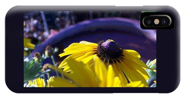 Sun Glory Series IPhone Case