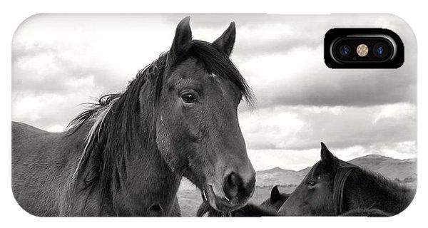 Virginia Range Mustangs IPhone Case