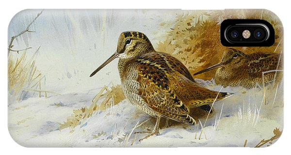 Woodcock iPhone Case - Winter Woodcock by Archibald Thorburn