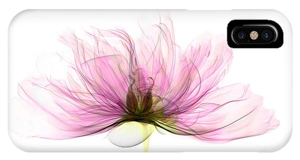 X-ray Of Peony Flower IPhone Case
