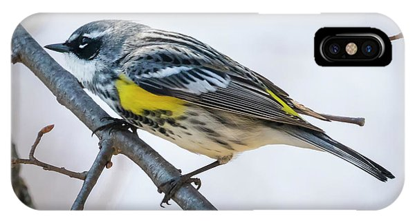 IPhone Case featuring the photograph Yellow-rumped Warbler  by Ricky L Jones