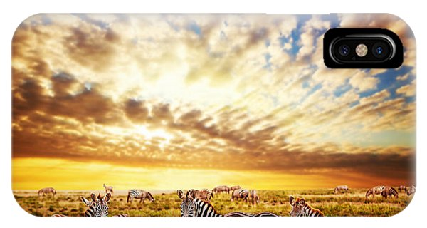 Zebras Herd On African Savanna At Sunset. IPhone Case