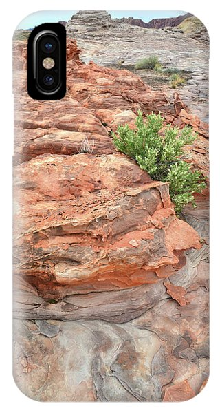 Colorful Sandstone In Valley Of Fire IPhone Case