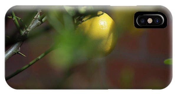 Fine Art IPhone Case