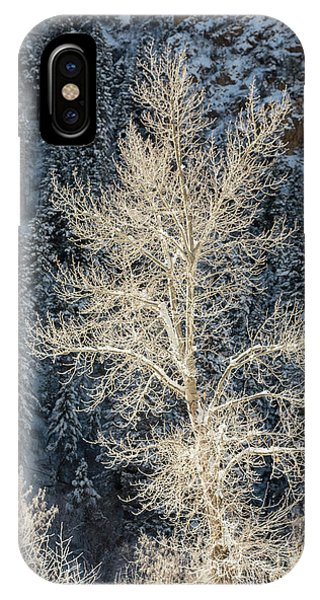 Colorado Winter IPhone Case