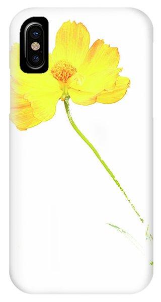 Cosmos Flower IPhone Case