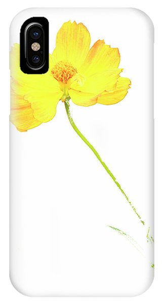 Cosmos Flower IPhone Case