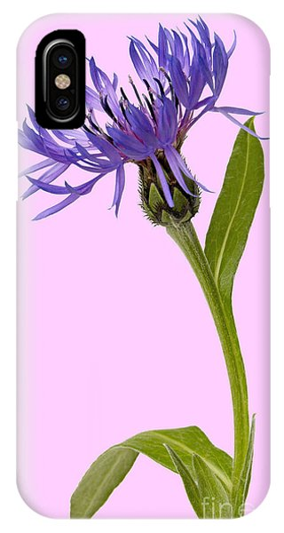 iPhone Case - Flowers  by Tony Cordoza