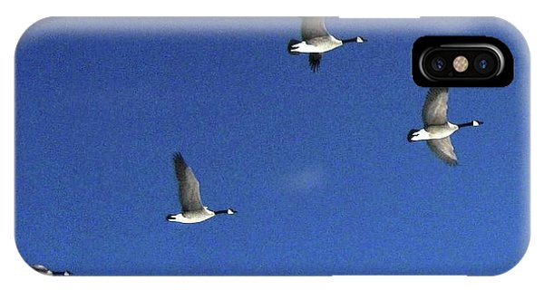 4 Geese In Flight IPhone Case