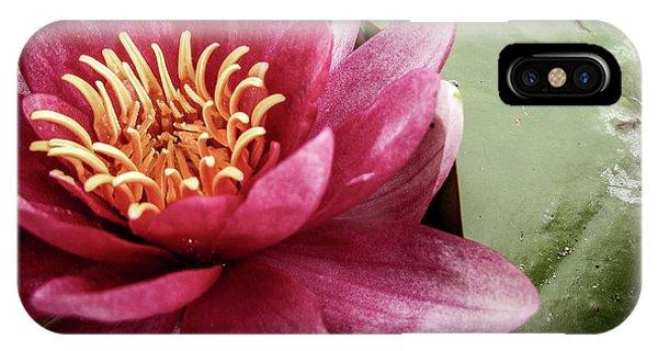iPhone Case - Lotus by Cesar Vieira