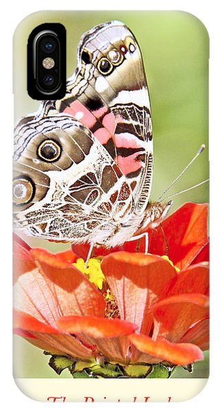 Painted Lady Butterfly On Zinnia Flower IPhone Case
