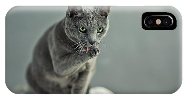 Iron iPhone Case - Russian Blue by Nailia Schwarz