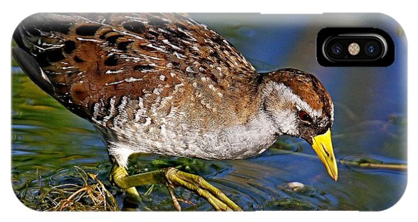 Sora Rail IPhone Case