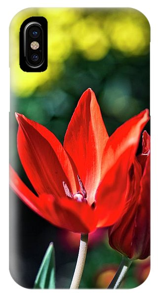 Spring Garden IPhone Case