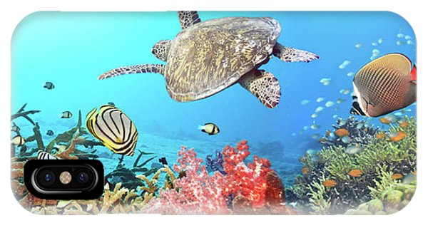 Scuba Diving iPhone Case - Underwater Panorama by MotHaiBaPhoto Prints