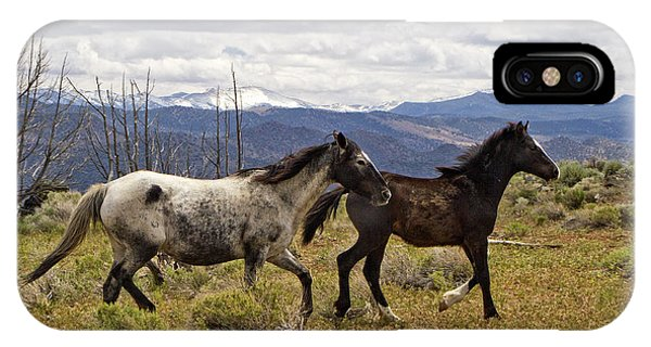 Wild Mustang Horses IPhone Case