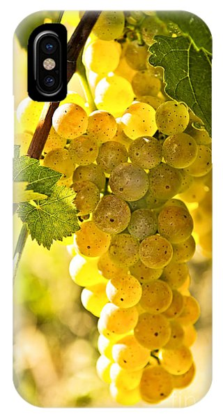 Green Grape iPhone Case - Yellow Grapes by Elena Elisseeva