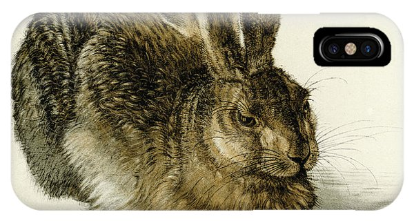 Albrecht Durer iPhone Case - Young Hare by Albrecht Durer