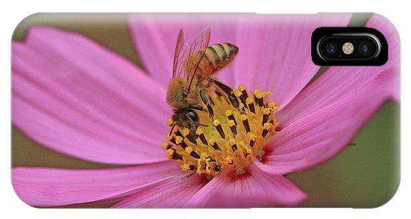 Honeybee IPhone Case