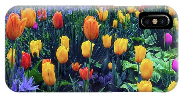Procession Of Tulips IPhone Case