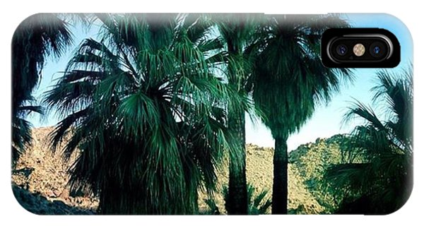 Famous Artist iPhone Case - 49 Palms Oasis. Have You Ever Been To by Alex Snay