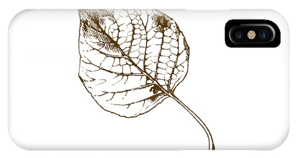 Autumn iPhone Case - Autumn Day by Chastity Hoff
